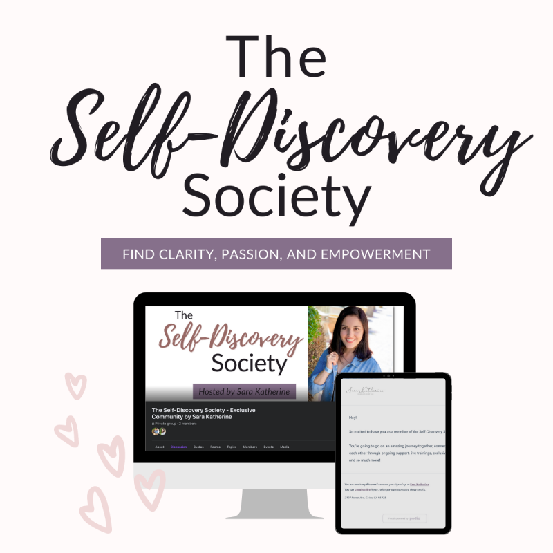 What is the Self-Discovery Society?